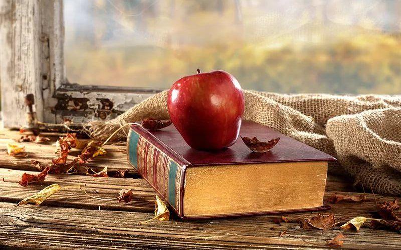 Чем украсить подоконник - Книги