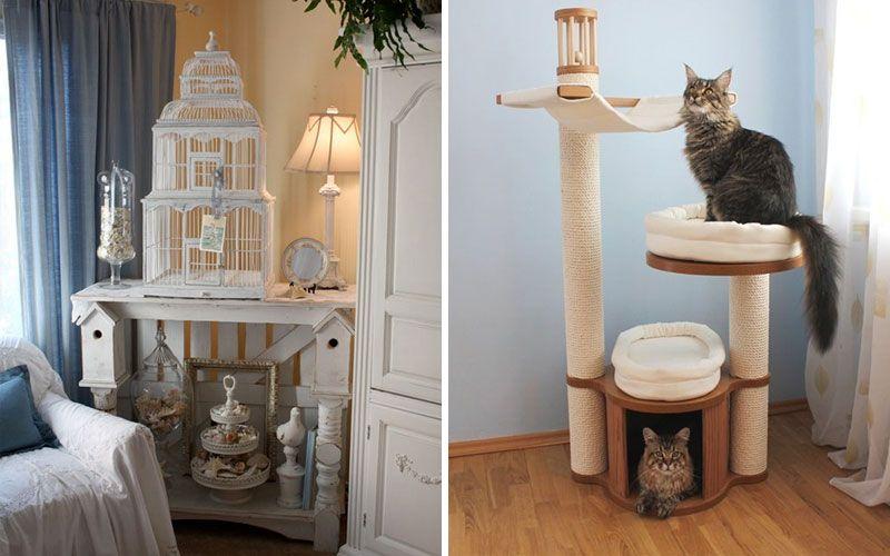 Птичья клетка и лежанка для котов в углу гостиной