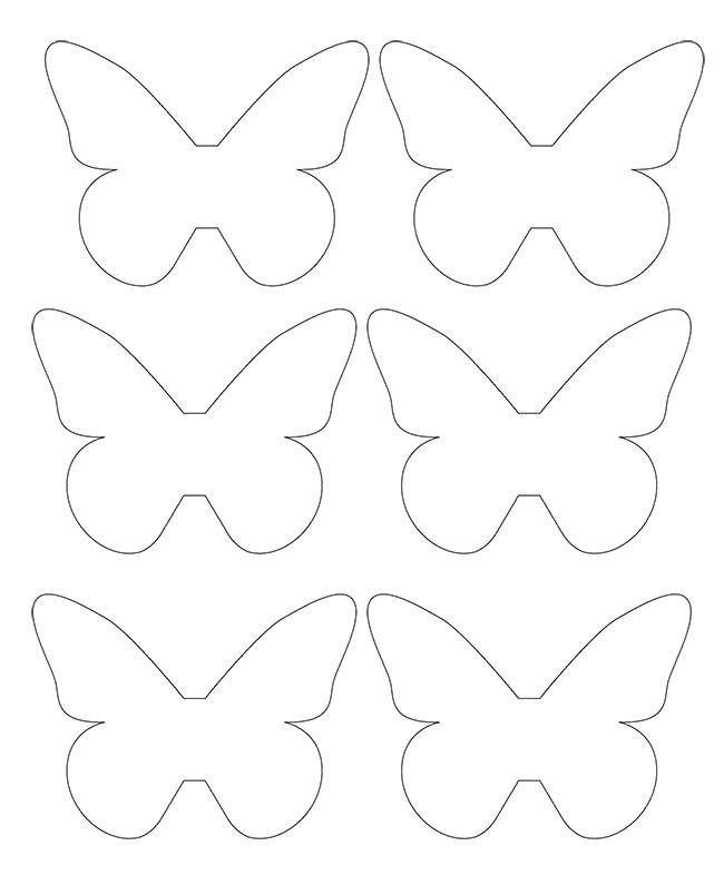 Шаблон бабочек среднего размера